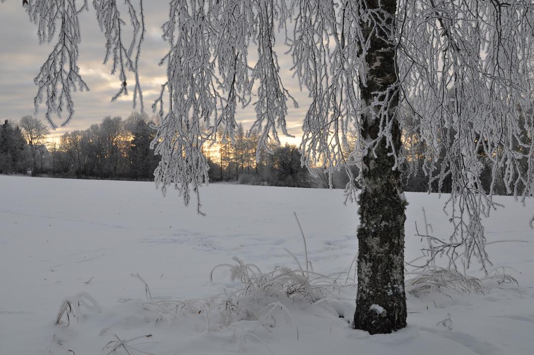 Vinter i Undenäs